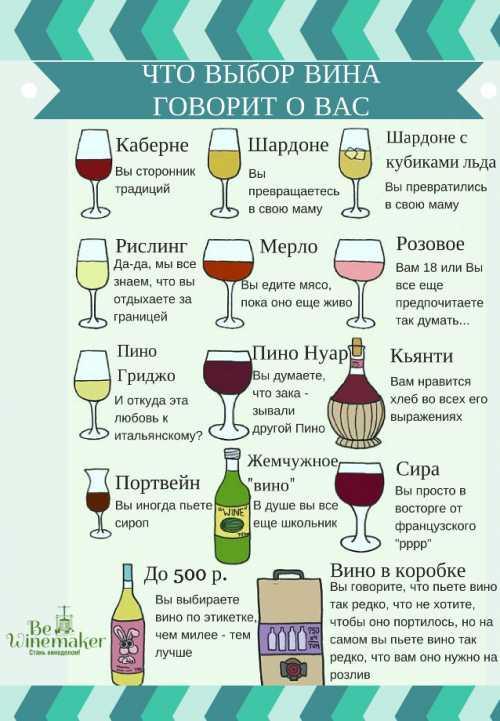 Как выбрать вино Классификация вин