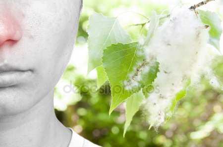 Вызывает ли тополиный пух сезонную аллергию