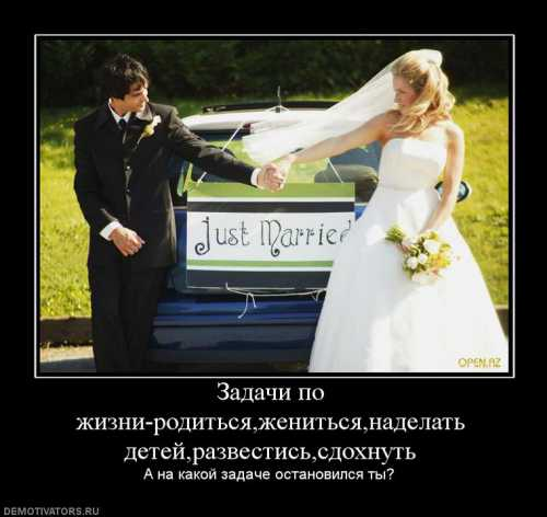 Хочешь узнать, за кого вышла замуж Подай на развод Продолжение