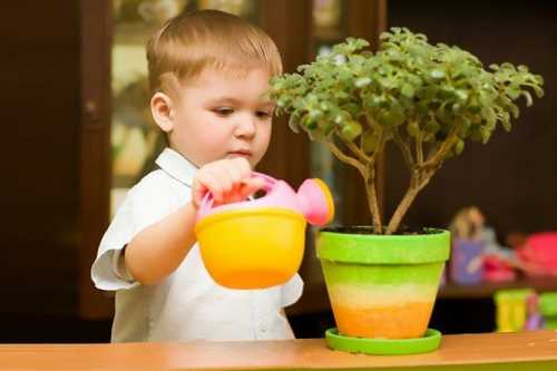 Дети, домашние животные и комнатные растения