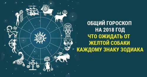 Гороскоп на сегодня, 12 декабря 2016 года, для всех знаков Зодиака