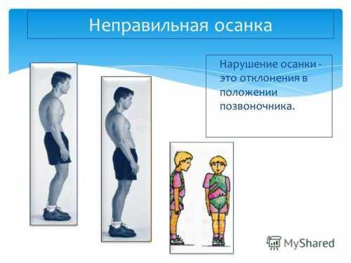 Упражнения кокон, скручивания на фитболе, подъем ног в висе, ножницы